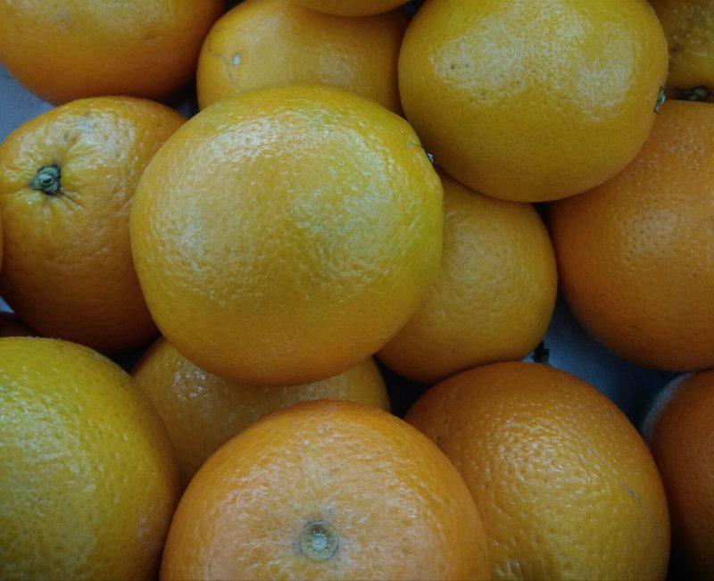 Arancio arancia
