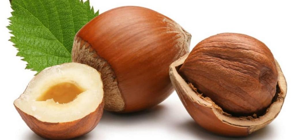 frutto nocciola